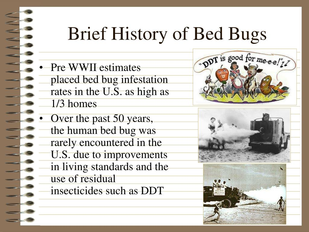 Brief History of Bed Bugs