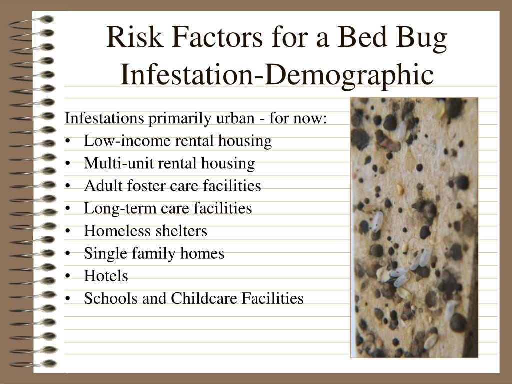 Risk Factors for a Bed Bug Infestation-Demographic