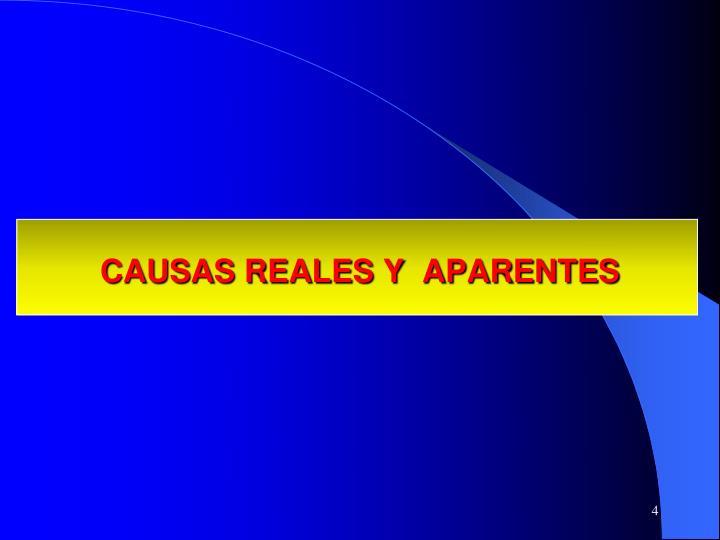 CAUSAS REALES Y  APARENTES