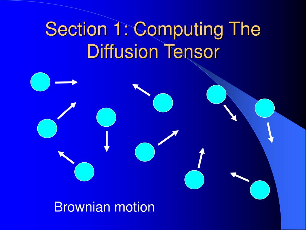 Section 1: Computing The Diffusion Tensor