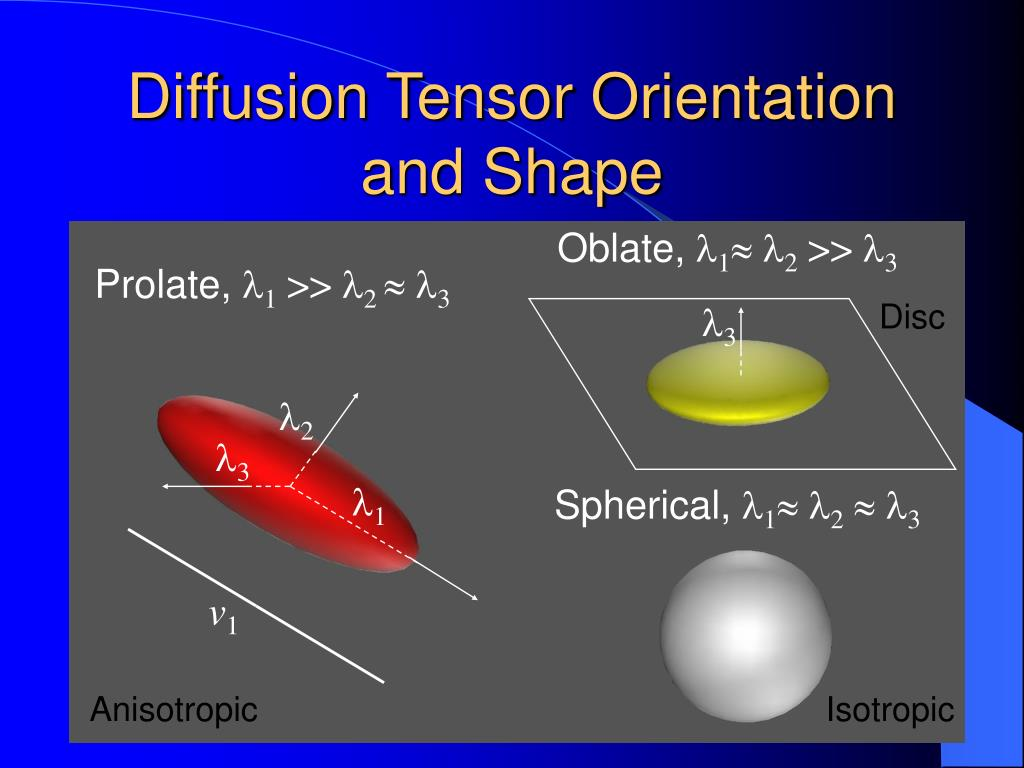 Diffusion Tensor Orientation and Shape