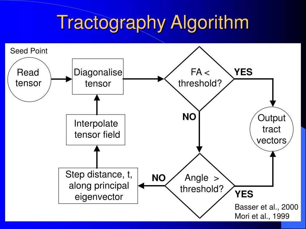 Tractography Algorithm