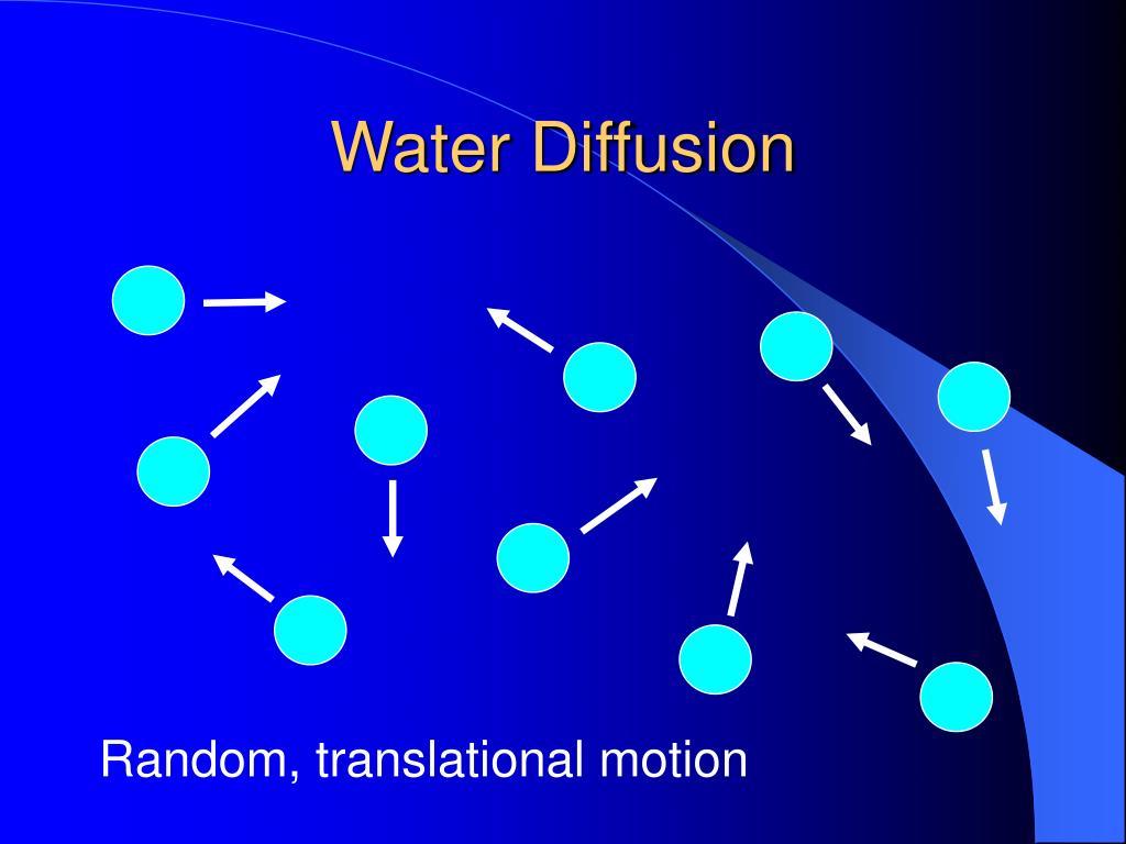 Water Diffusion