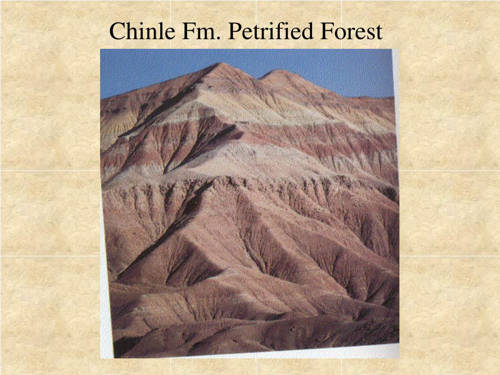 Chinle Fm. Petrified Forest