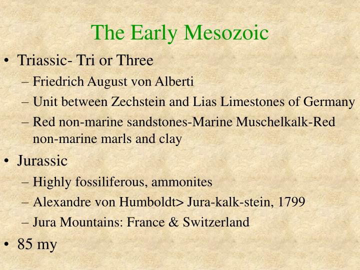 The early mesozoic2