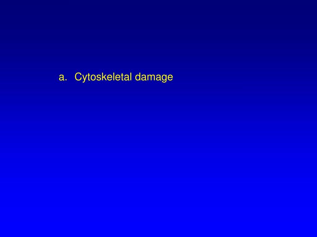 Cytoskeletal damage