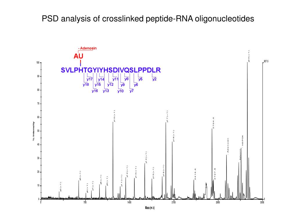 PSD analysis of crosslinked peptide-RNA oligonucleotides