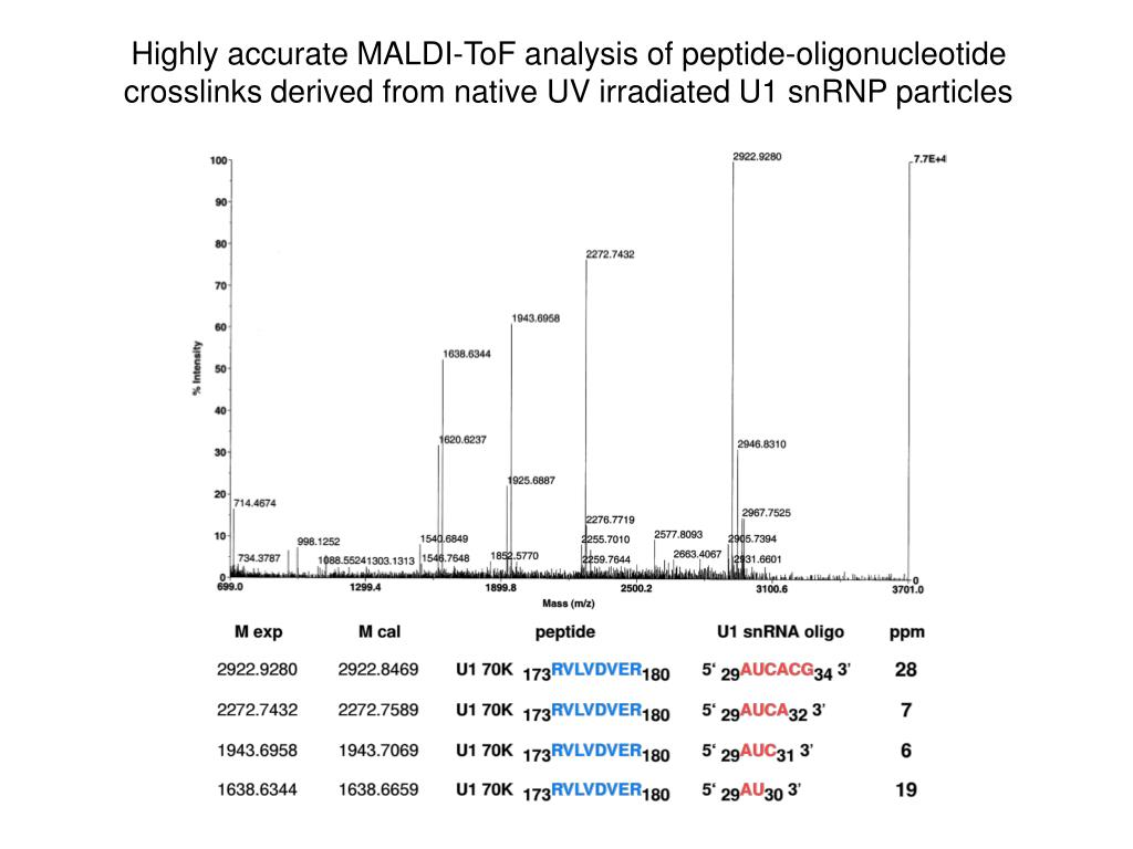 Highly accurate MALDI-ToF analysis of peptide-oligonucleotide