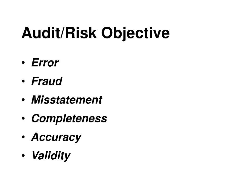 Audit/Risk Objective