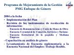 programa de mejoramiento de la gesti n pmg enfoque de g nero5
