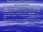 shocks and propagation mechanisms