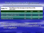the dynamics of adjustment67