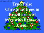 true false christmas trees in brazil are real trees with lights on them
