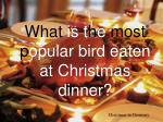 what is t h e most p opular bird eaten at christmas dinner