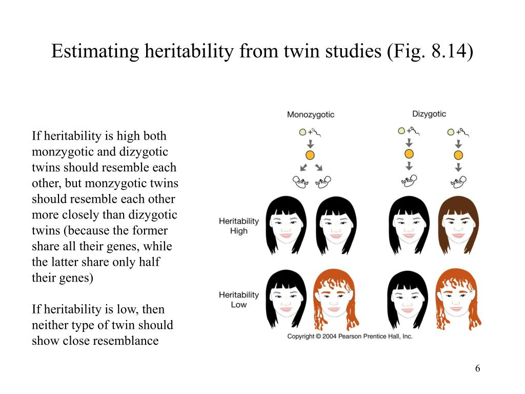 Estimating heritability from twin studies (Fig. 8.14)