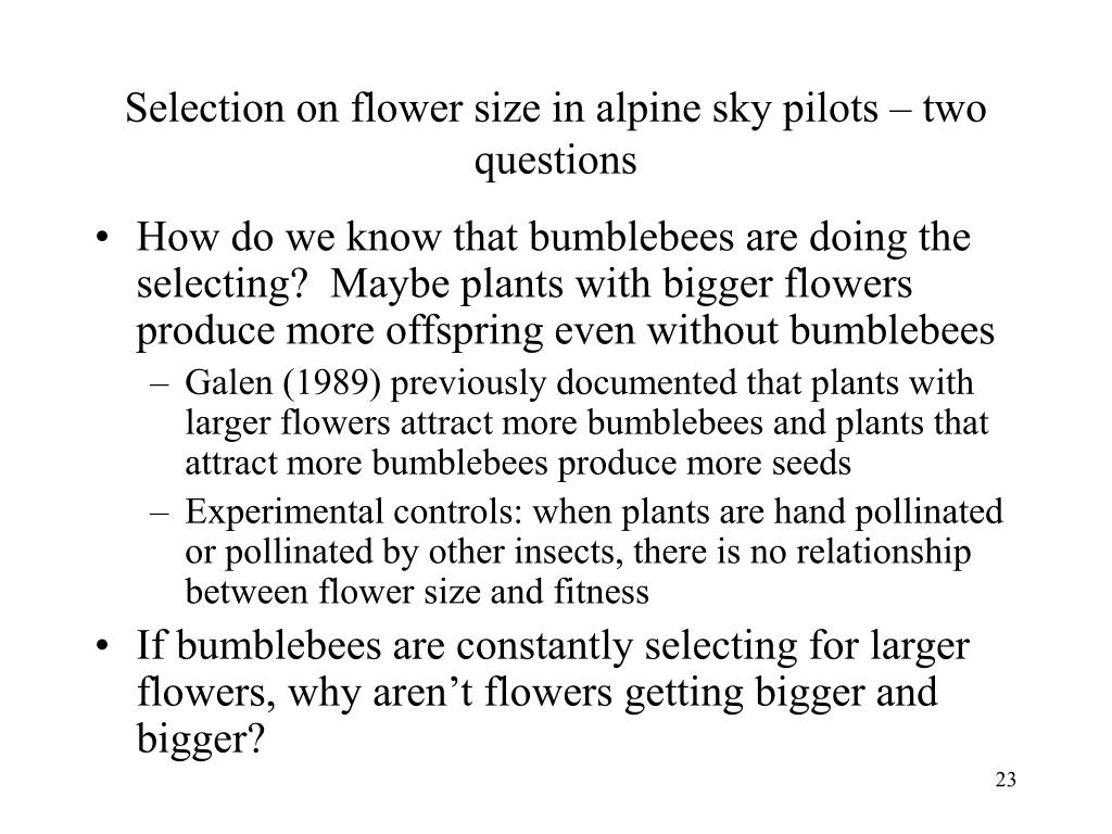 Selection on flower size in alpine sky pilots – two questions