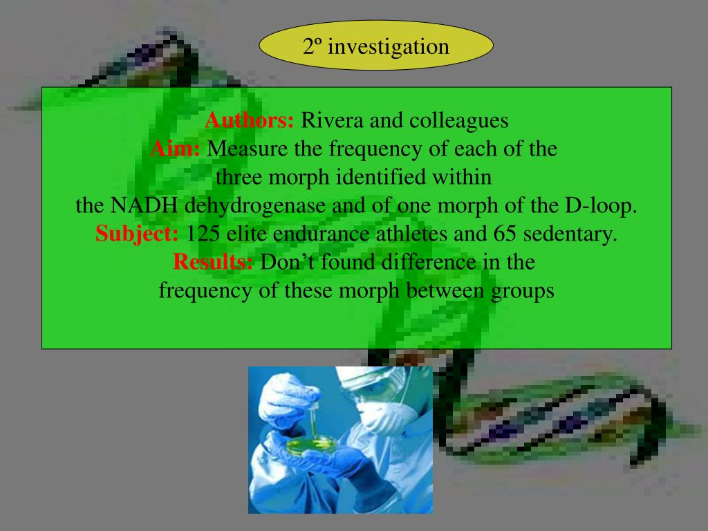 2º investigation