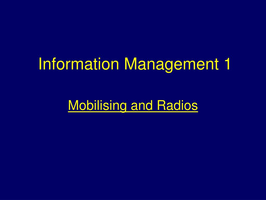 Information Management 1