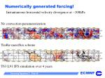 numerically generated forcing