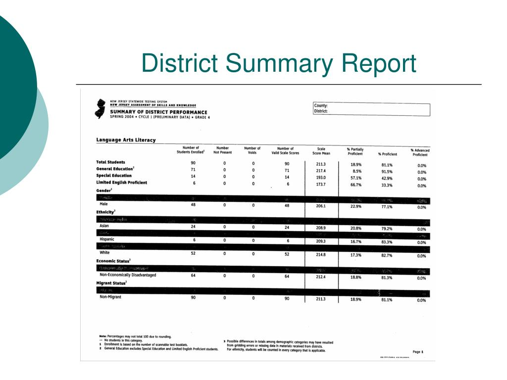 District Summary Report