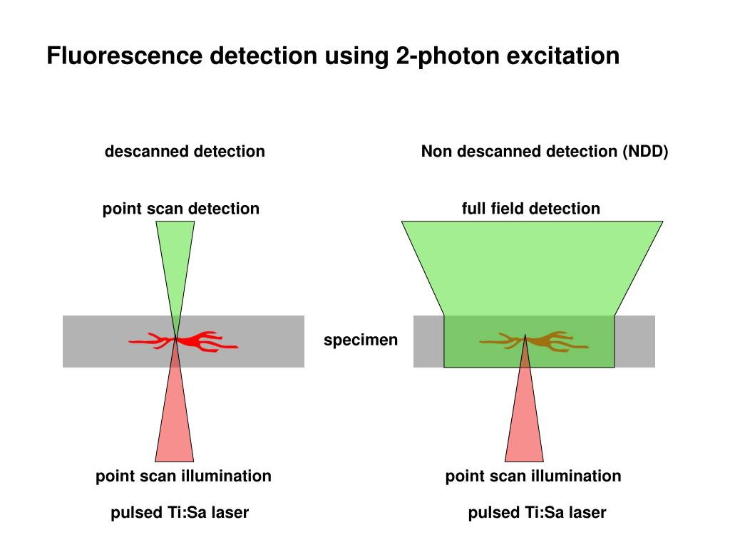 full field detection