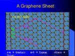a graphene sheet