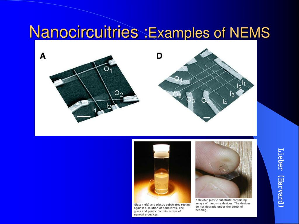 Nanocircuitries :