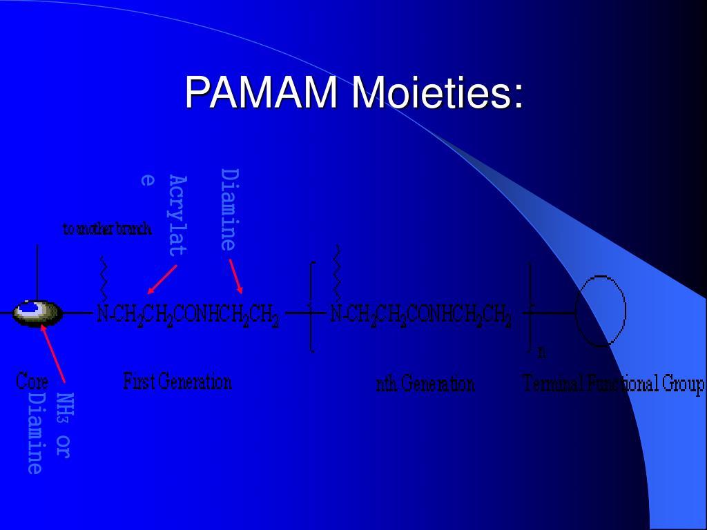 PAMAM Moieties: