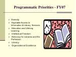 programmatic priorities fy07