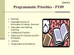 programmatic priorities fy09