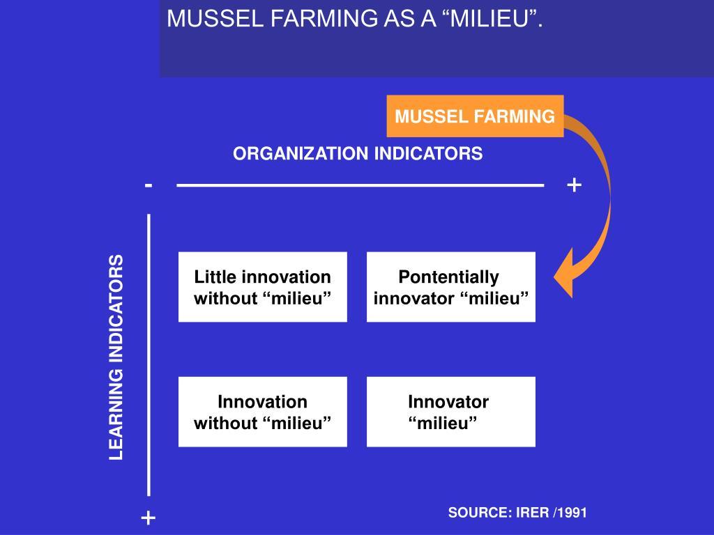 """MUSSEL FARMING AS A """"MILIEU""""."""