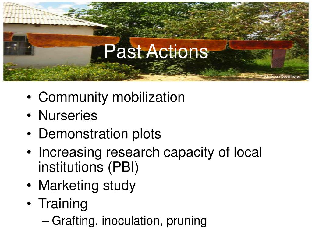 Past Actions