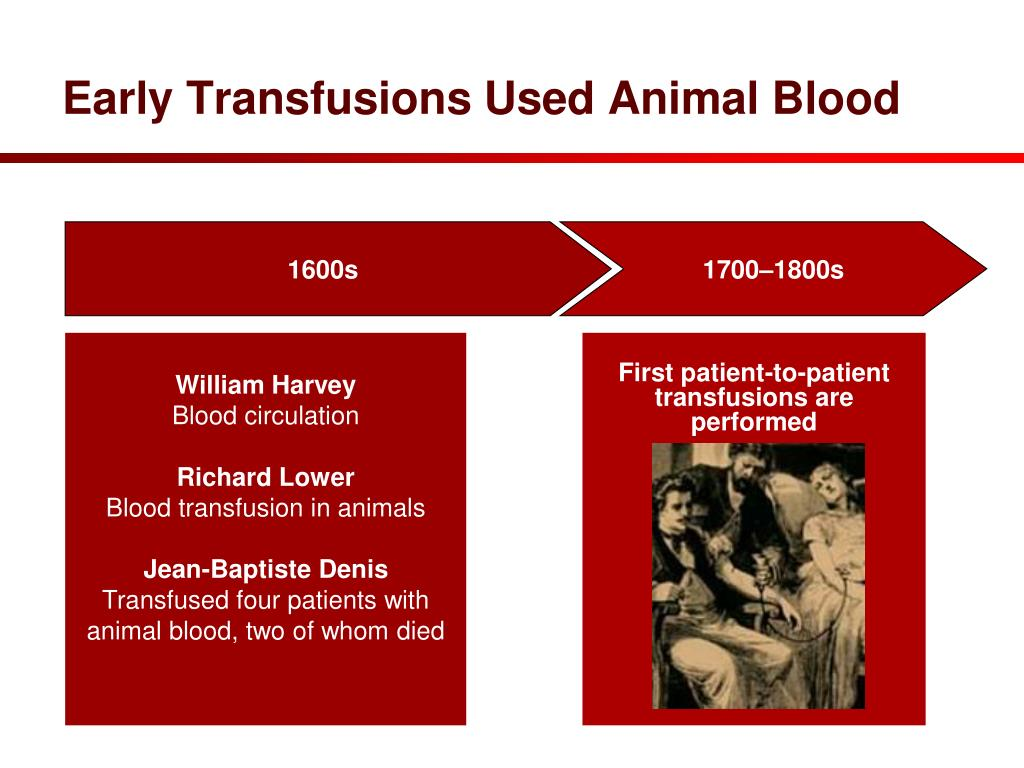 Early Transfusions Used Animal Blood