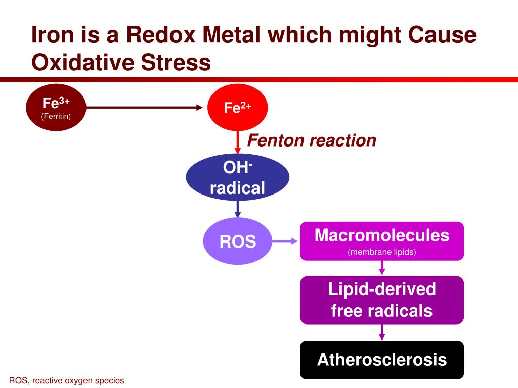 Iron is a Redox Metal which might Cause Oxidative Stress