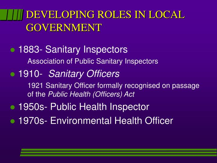 DEVELOPING ROLES IN LOCAL GOVERNMENT