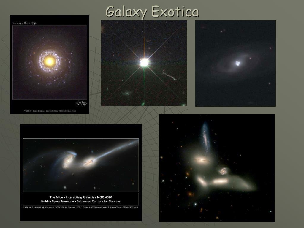 Galaxy Exotica