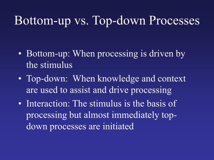 Bottom-up vs. Top-down Processes