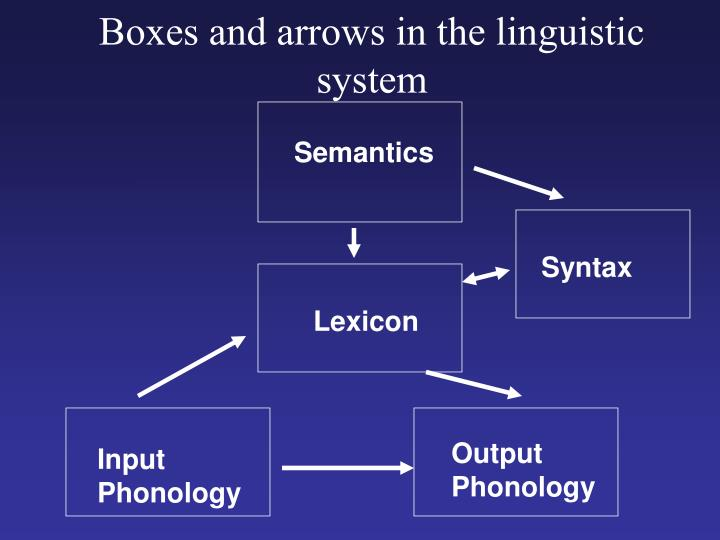 Boxes and arrows in the linguistic system