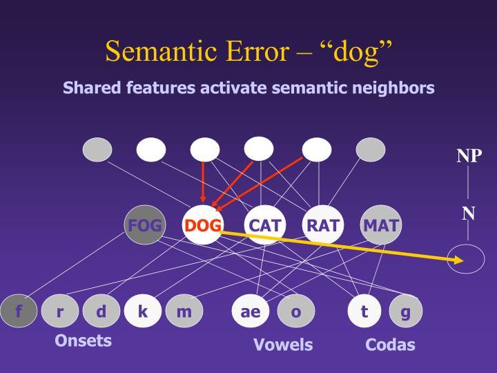 "Semantic Error – ""dog"""