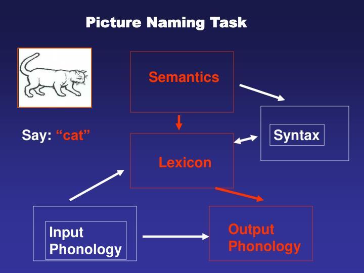 Picture Naming Task