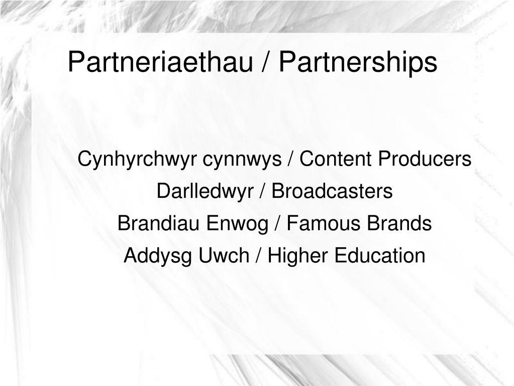 Partneriaethau / Partnerships