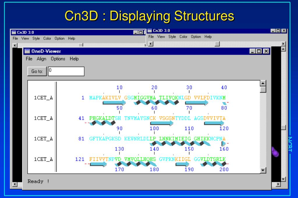Cn3D : Displaying Structures