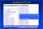 genbank on ftp site