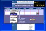 ncbi homepage35