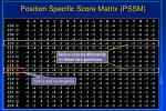position specific score matrix pssm