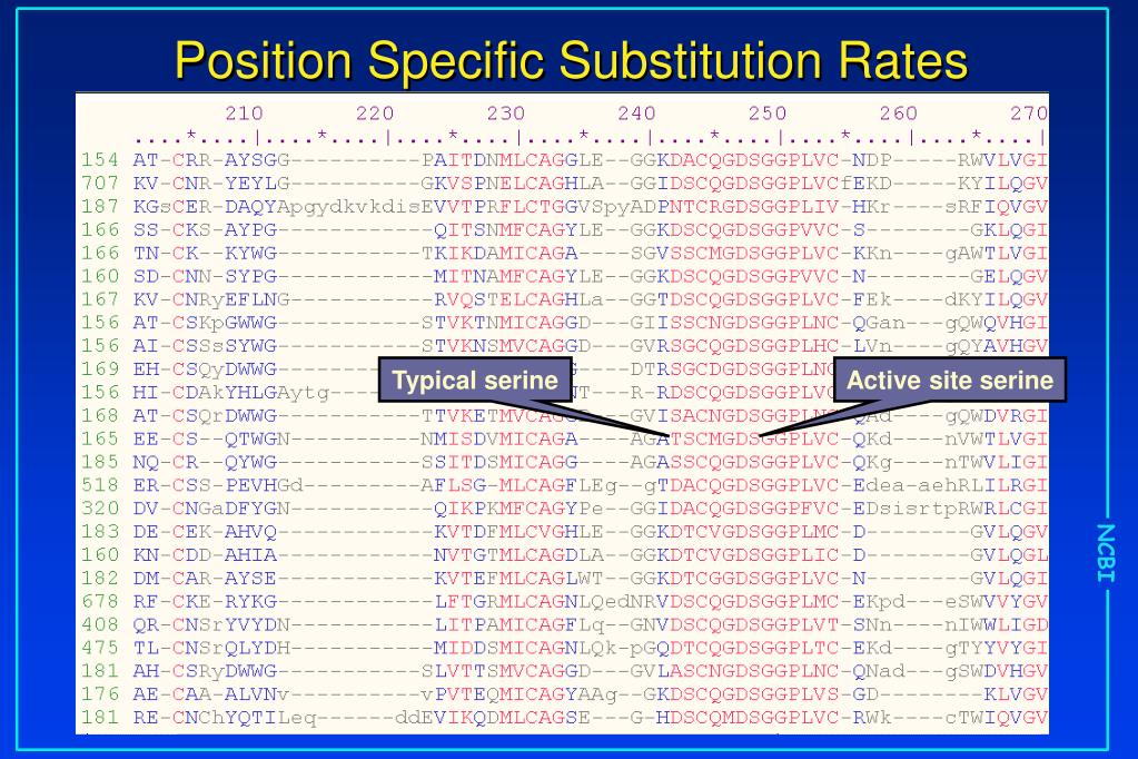 Position Specific Substitution Rates