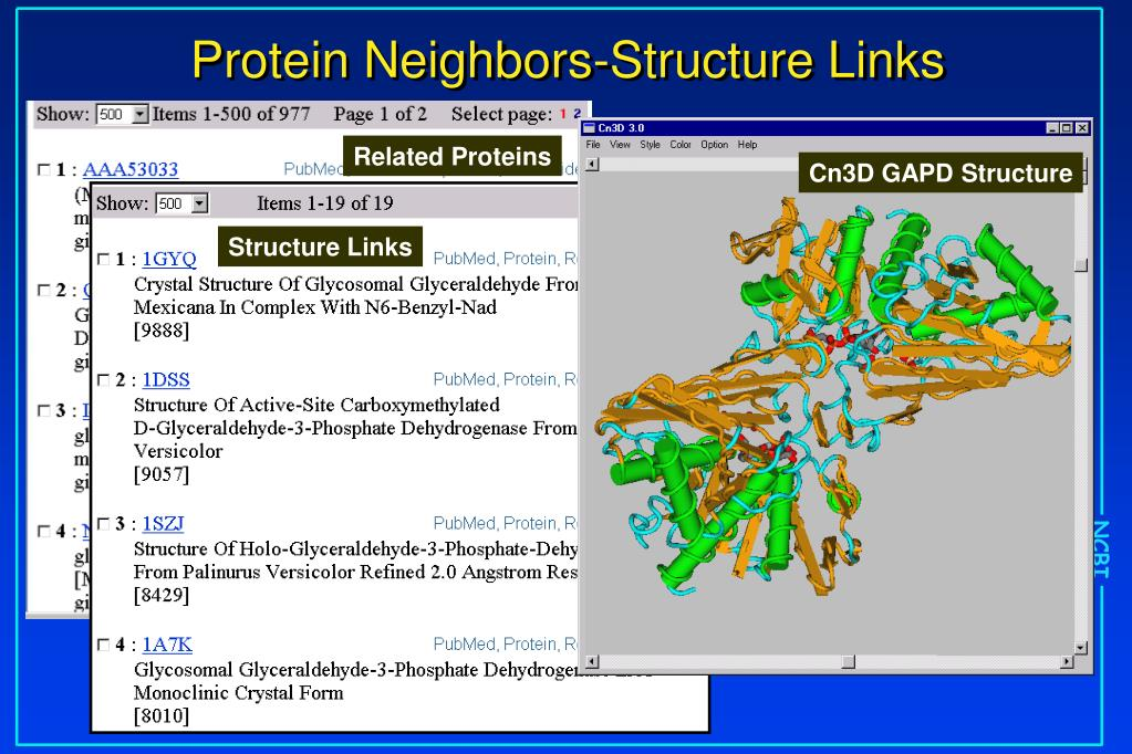 Related Proteins