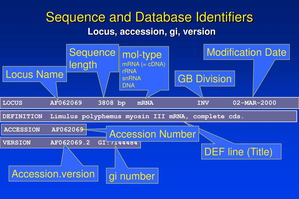Sequence and Database Identifiers