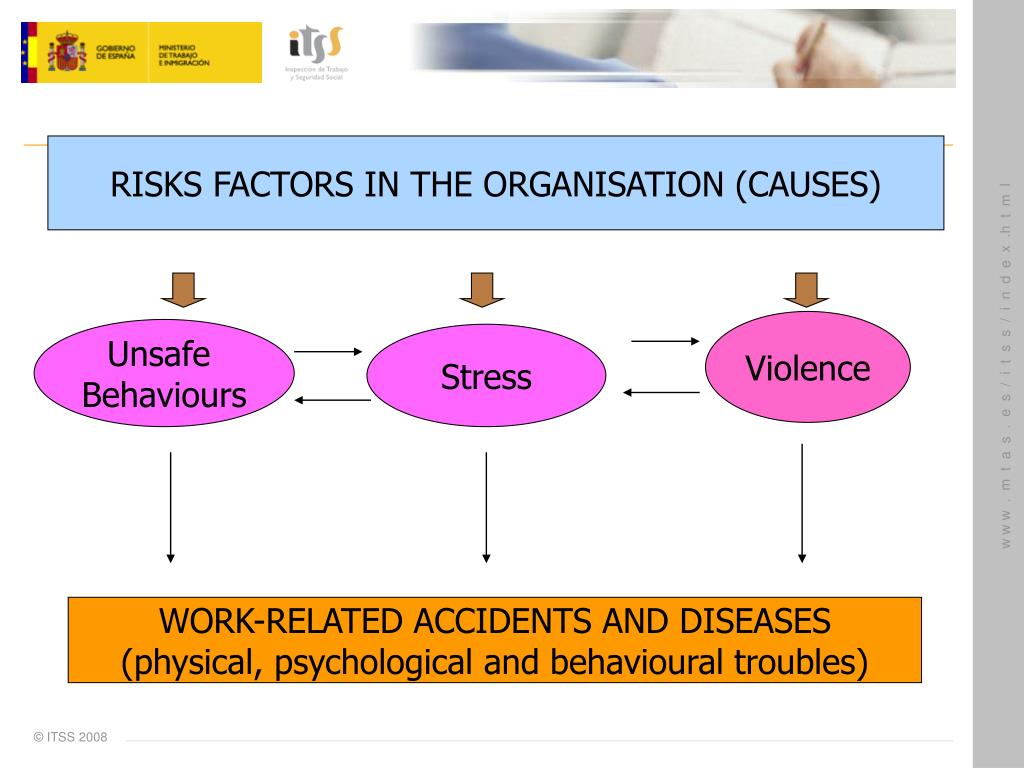 RISKS FACTORS IN THE ORGANISATION (CAUSES)