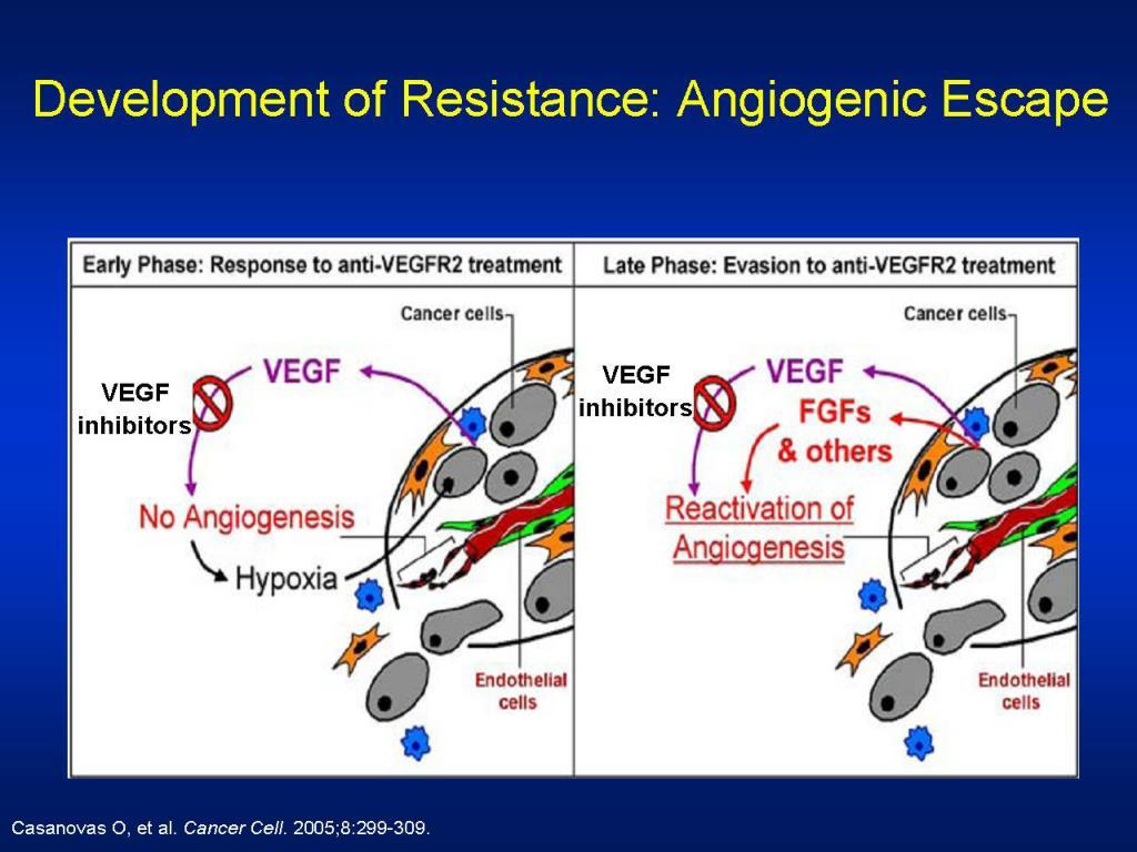 Development of Resistance: Angiogenic Escape